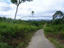 easttimor_075