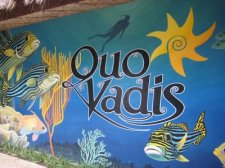 Quo Vadis Beach Resort Cebu