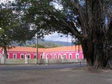 easttimor2_048.jpg
