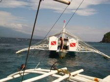 apo island philippines how to get there