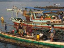 fish-market-001.jpg