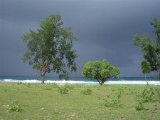 easttimor_117.jpg
