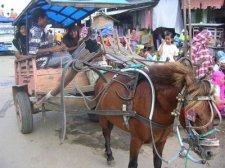 Sape – Sumbawa to Flores