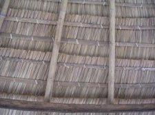 Alang Alang Grass Roof