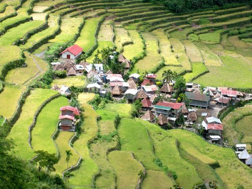 Batad village at the bottom of the rice terraces