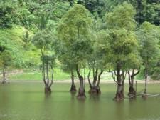 twin-lakes-009
