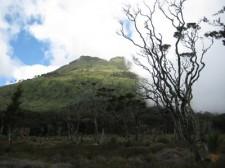 climbing-mount-apo-021