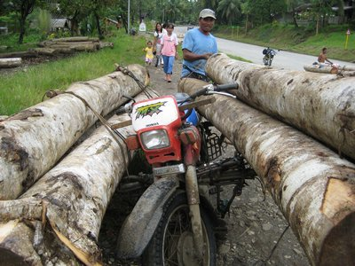 Logging with Motorcycles