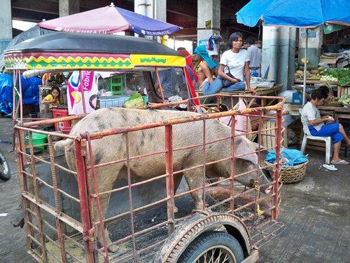 Ormoc City Market