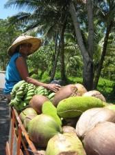 philippine-vegetables-007