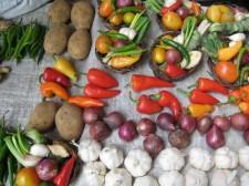 veggies-diet-004
