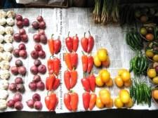 veggies-diet-006