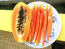 vegigies-fruits-010