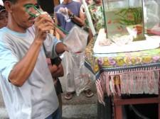 tropical-fish-philippines-011