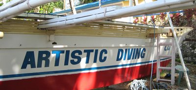 artistic-dive-sipilay-011