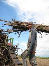 sugar-cane-workers-001