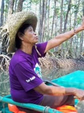 Mangrove Swamp Palawan