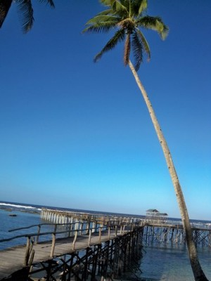 cloud-nine-siargao-surf-003