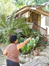 Picardal Lodge San Vicente Palawan