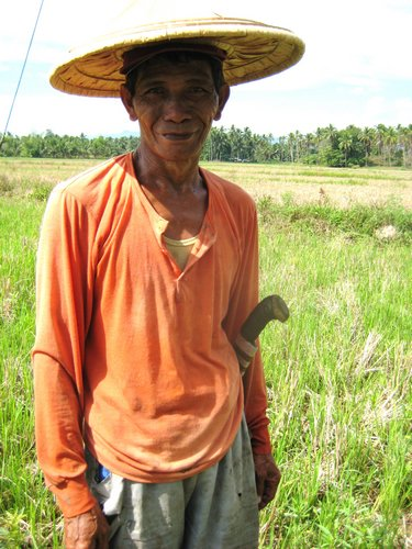 rice farmer in orange shirt