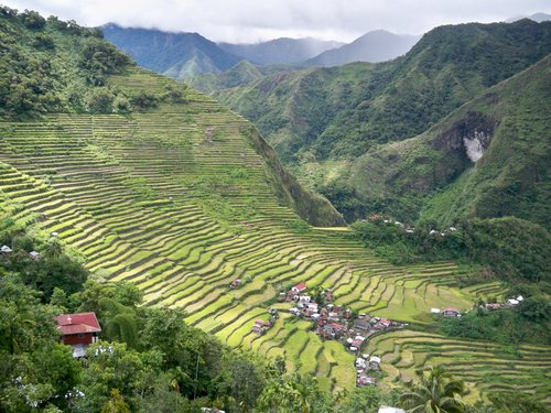 Batad Rice Fields