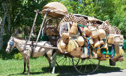 horse cart with goods for sale