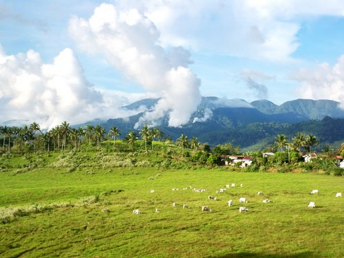 the mountains of Leyte where we live