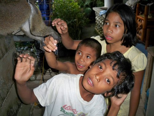philippine monkey with kids