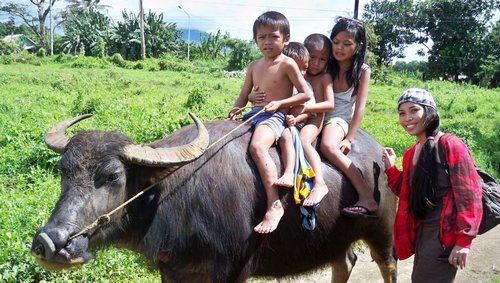 kids riding carabao in the philippines