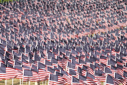 flags at the healing field