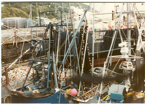 boats at the docks in Kodiak