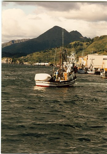 Kodiak cannery row