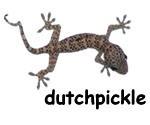 dutchpickke logo