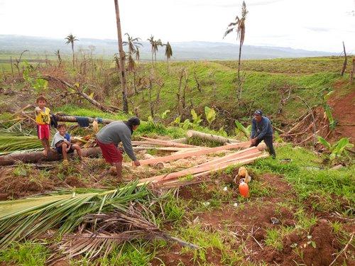 coco wood lumber