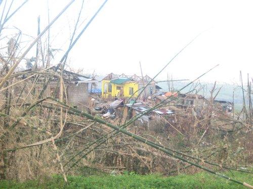 typhoon 8