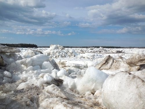 Mackenzie River ice