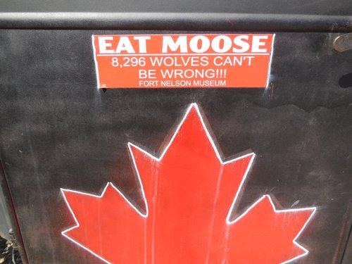 Eat Moose