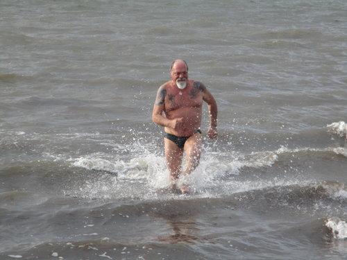 hardy swimmer